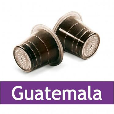 Capsule Nespresso Compatible Capsulo Guatemala - 50 capsules